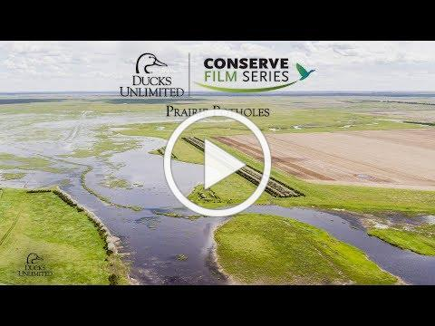 DU Conserve: Prairie Pothole