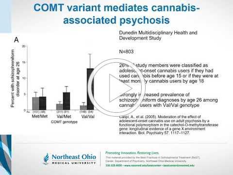 Cannabis and Schizophrenia: A causal (not coincidental) association