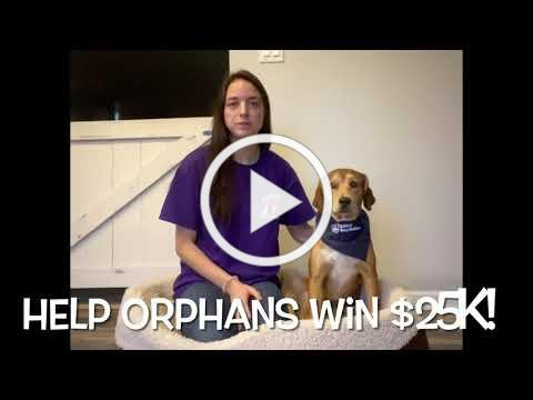 Help Orphans of the Storm win $25,000!