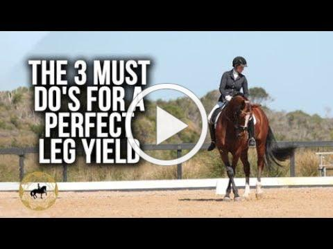 The 3 must do's for a perfect leg yield - (Dressage Mastery TV Ep 285)