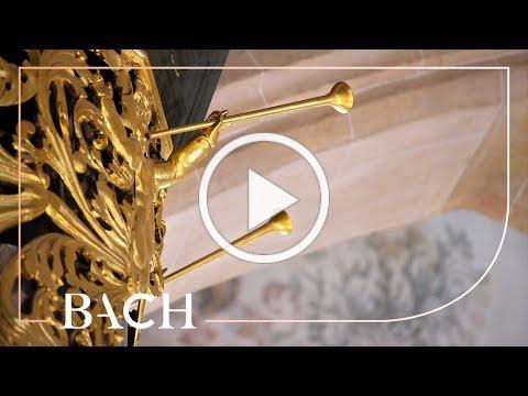 Bach - Erbarm dich mein, o Herre Gott BWV 721 - Van Doeselaar | Netherlands Bach Society