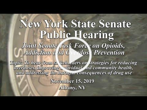 Joint Senate Task Force on Opioids, Addiction and Overdose Prevention Public Hearing - 11/15/19