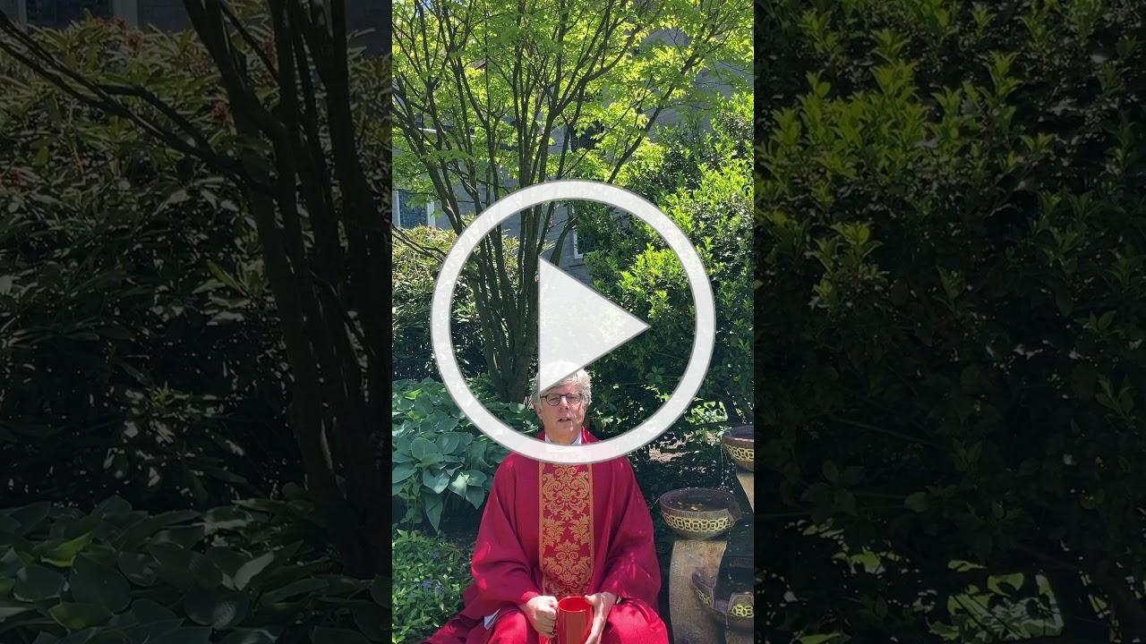 An Initiation to Pentecost from the Memorial Garden (5/24/20)