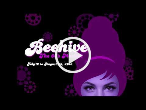 A Look Into the Beehive