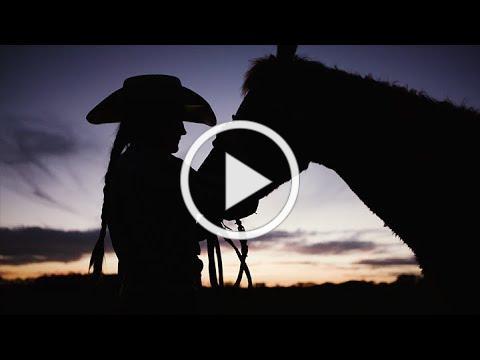 The Alabama Cattlemen