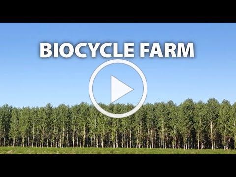 Poplar Farm Lifecycle