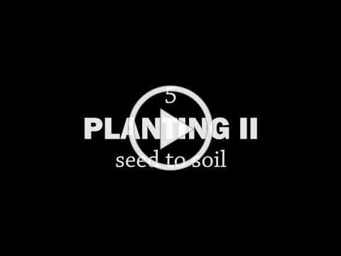 Rotationally Raised - Planting II: Seed to Soil
