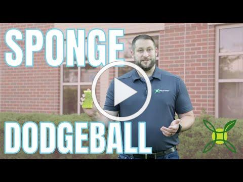 Summer Camp at Home: Sponge Dodgeball Opens in new window