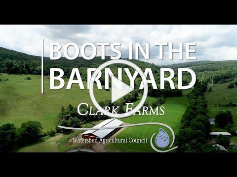 Boots in the Barnyard: Clark Farms