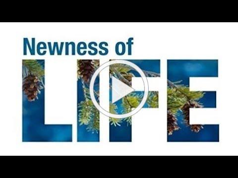 """""""Newness of Life"""""""