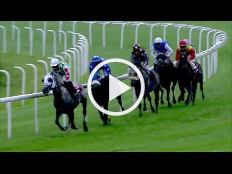 Goodwood 02/08/17 Qatar International Stakes