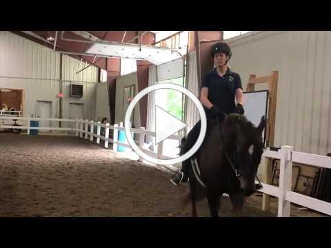 Lateral Work with Miss B
