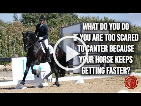 Too scared to canter because your horse keeps getting faster? (FearLESS Friday Ep74)