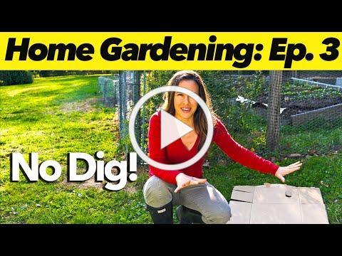 How to Build an EASY No-Dig Garden   Home Gardening: Ep. 3