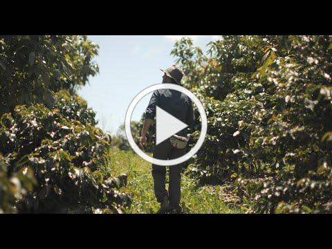 Kiss the Ground Film Trailer (2020)