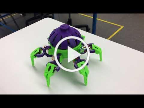 MHS MAD Lab Hexapod Robots