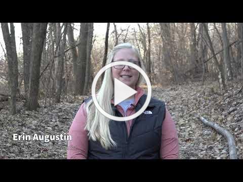 Stop the Spread of Invasive Plants - Buckthorn