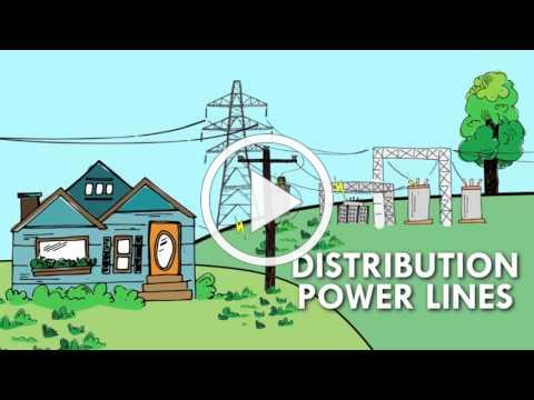 The Electric Grid Connects Us All
