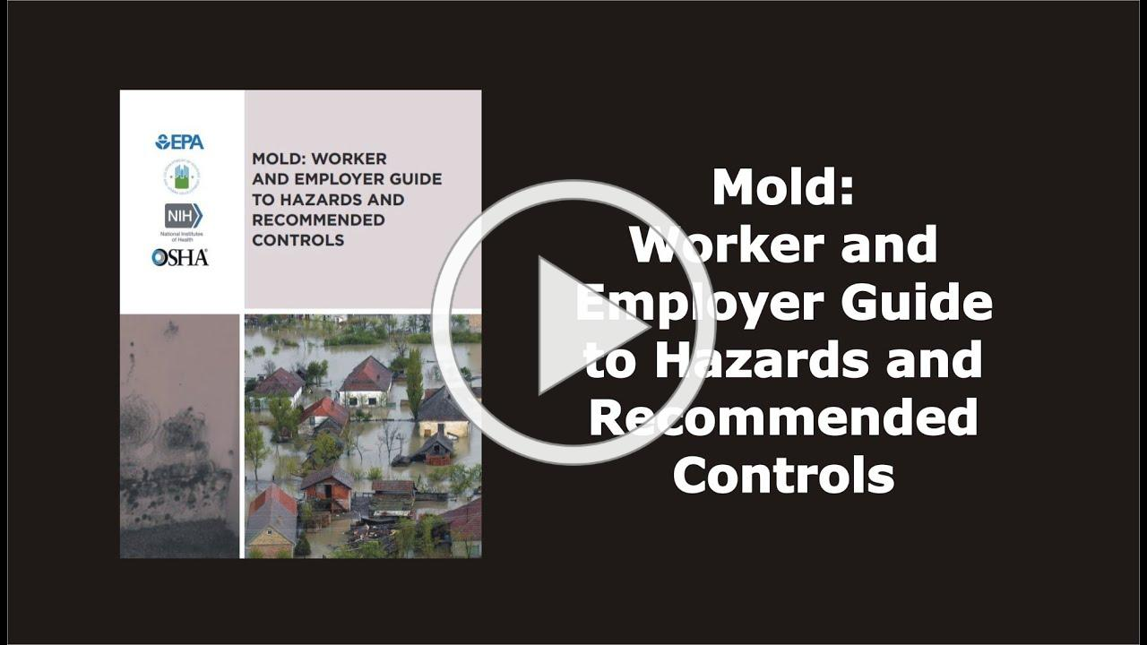 Mold: Worker and Employer Guide to Hazards and Recommended Controls