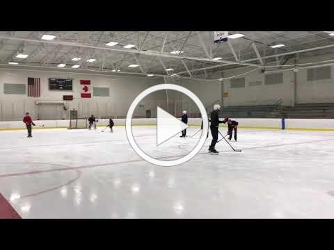 Walker Ice and Fitness: Stick & Puck