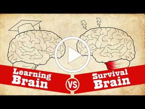 Understanding Trauma: Learning Brain vs Survival Brain