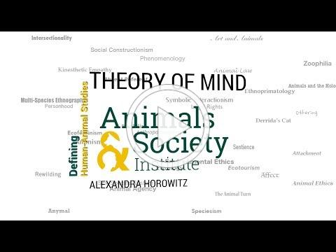Defining Theory of Mind with Alexandra Horowitz - ASI's Defining Human-Animal Studies 26