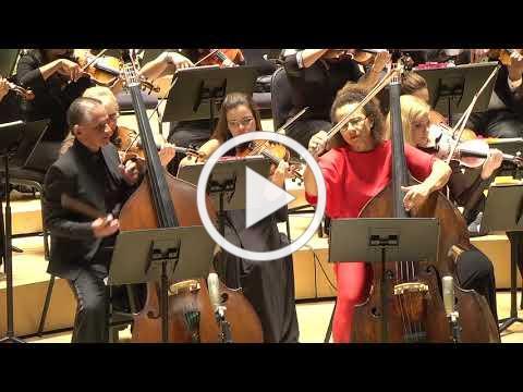 The Miami Symphony Orchestra - Love and Betrayal
