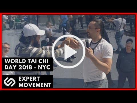 World Tai Chi Day 2018 NYC ☯ Damian Neve - Presentation