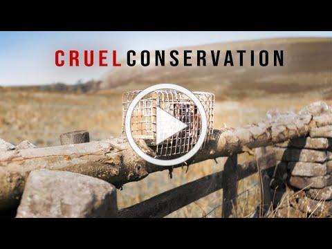 Is Conservation Too Cruel?