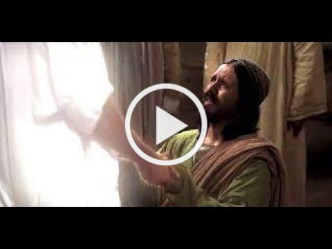 Detente - hablemos de Jesus - Segundo Domingo de Pascua