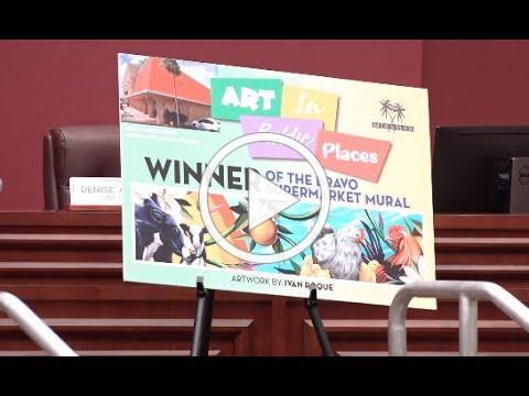 Bravo Supermarket Mural   Art on the Go Winner