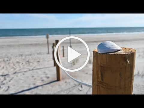 Emerald Isle Sand Fencing - 2021