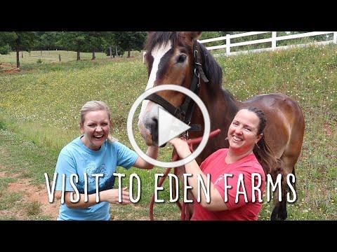Visit to Eden Farms