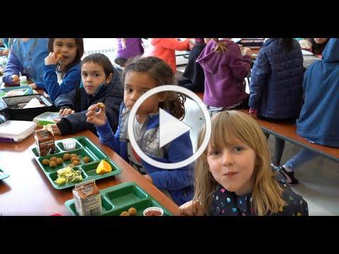 Kindergarten School Lunch
