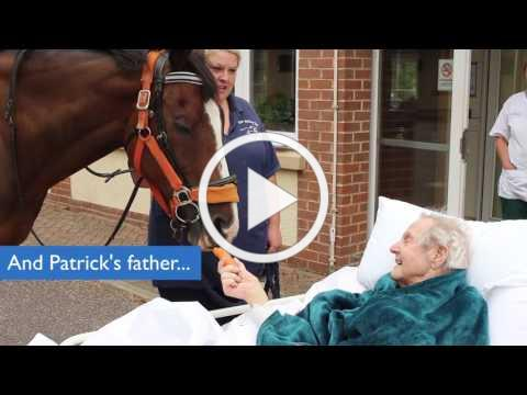 Horse visits patient Patrick at North Devon Hospice