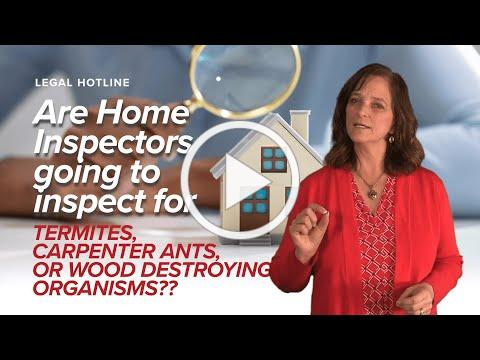 Can a Home Inspector inspect for Wood Destroying Organisms?
