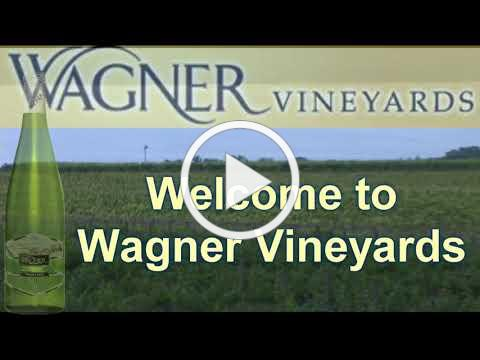 Welcome to Wagner Vineyards