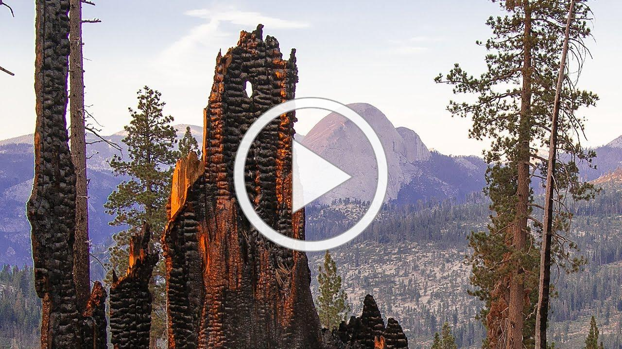 Fire & Water: Restoring natural fire to California's mountains
