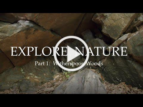 Explore Nature: Witherspoon Woods