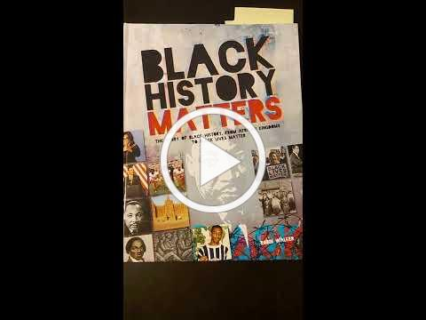 Black History Matters book review