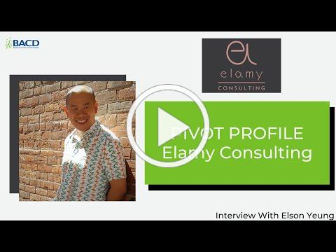 Pivot Profile - Elamy Consulting