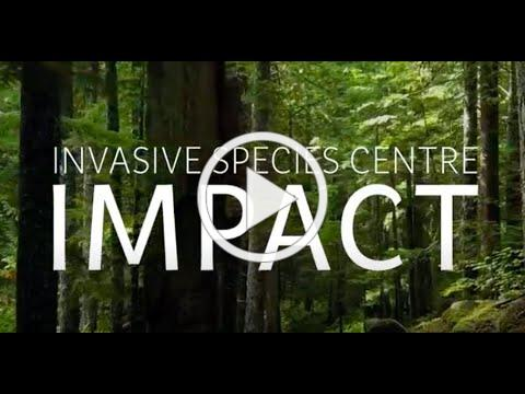 Protecting Canadian Forests
