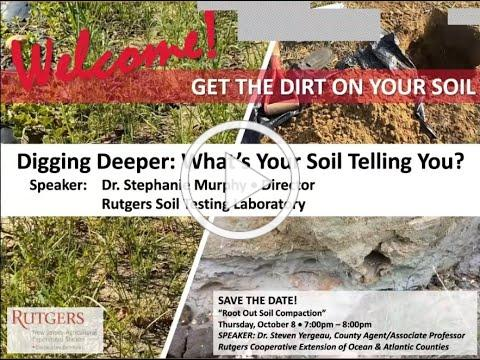 Digging Deeper What's Your Soil Telling You