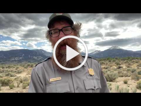 The Great Basin Rattlesnake