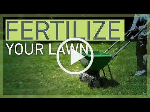 How to fertilize your lawn and protect the Chesapeake