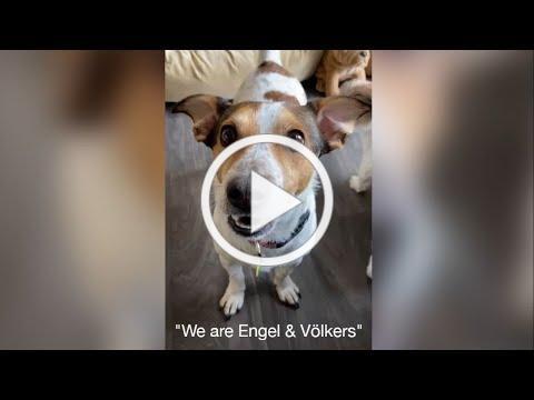 This is us. We are Engel & Völkers.