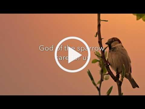 God of the Sparrow by Craig Courtney from Beckenhorst Press