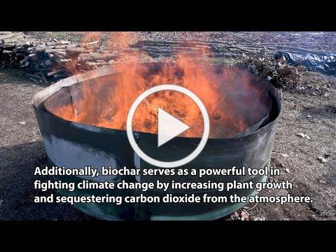 MWMC Biocycle Farm Poplar Harvest: Biochar Production