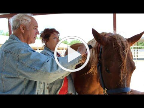 Horse Therapy for Dementia Patients: A UC Davis Study