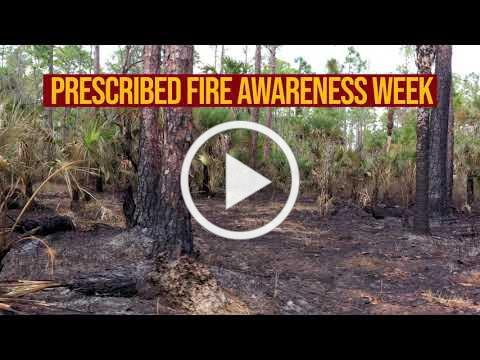Prescribed BURNS can actually help prevent WILDFIRES!